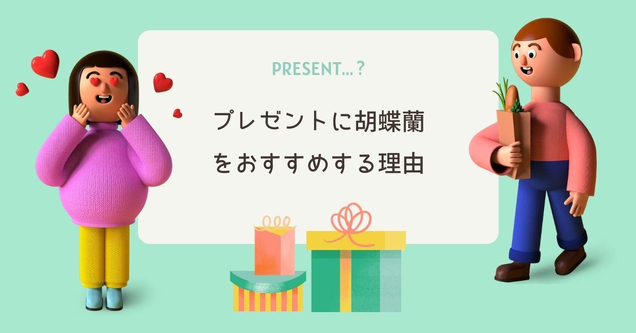 両親へのプレゼントに胡蝶蘭をおすすめする理由