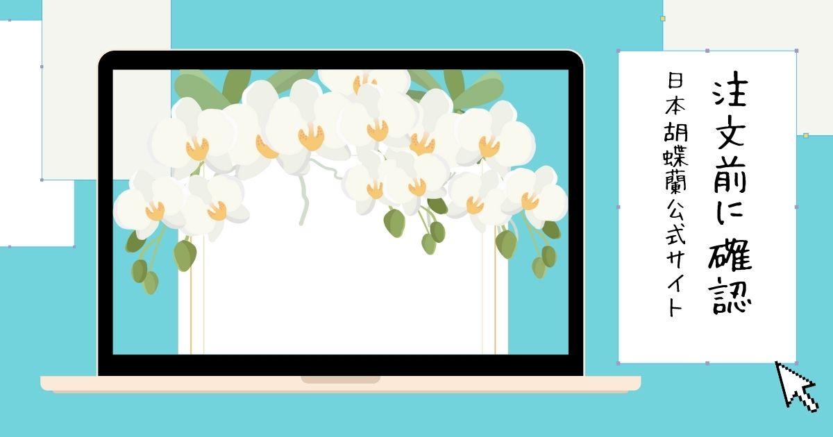 胡蝶蘭を配達してもらえる地域が注文前にわかる!日本胡蝶蘭公式サイト